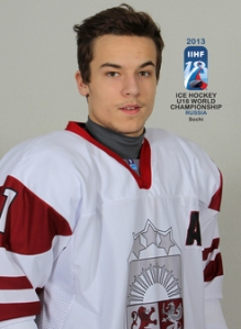 2013 IIHF Ice Hockey U18 World Championship